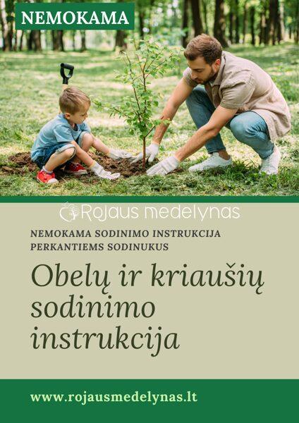 NEMOKAMA obelų sodinimo instrukcija